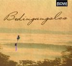 Cover Bedinungslos CD