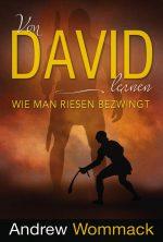 Cover Von David lernen