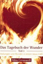 Cover Das Tagebuch der Wunder Teil 1