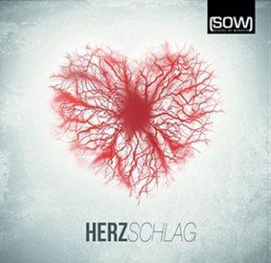 CD Herzschlag
