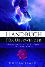 Cover HANDBUCH FÜR ÜBERWINDER